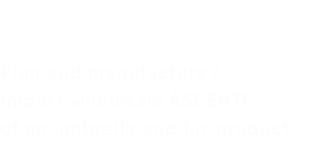 ASCENTE S.A. Plan and manufacture / import wholesale ASCENTE of an umbrella and fur